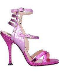 Pinko Sandals - Purple
