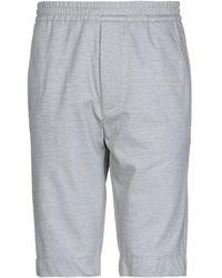 Obvious Basic Shorts & Bermuda Shorts - Grey
