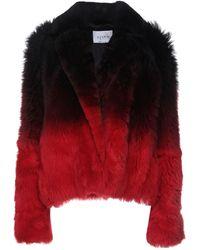 LIVEN Jacket - Red