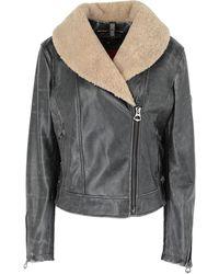 Matchless Jacket - Grey