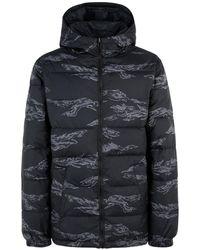 e406894a3a Synthetic Down Jacket - Gray