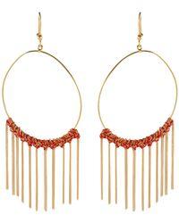 Carolina Bucci Earrings - Metallic
