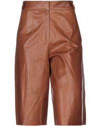 Arma Cropped Pants - Brown