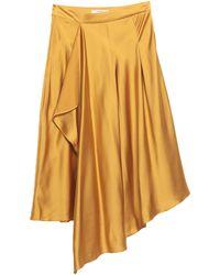 Glamorous 3/4 Length Skirt - Multicolor