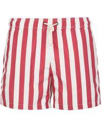 Ripa & Ripa Swim Trunks - Red