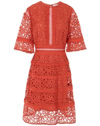 True Decadence Robe aux genoux - Rouge