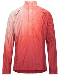 Cottweiler Sweatshirt - Red