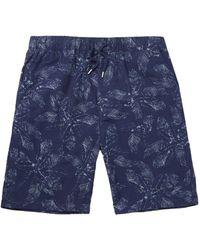 Albam Shorts e bermuda - Blu