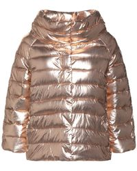 Hope Synthetic Down Jacket - Multicolour