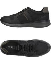 Geox Sneakers & Tennis shoes basse - Nero