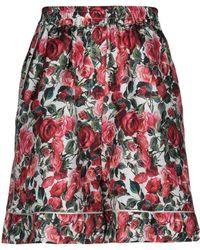 Dolce & Gabbana Bermuda - Red
