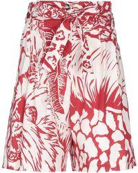 Cristina Gavioli Collection Bermuda Shorts - Red