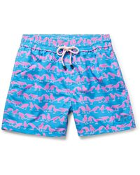 Pink House Mustique Swimming Trunks - Blue