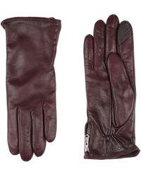 Royal Republiq Gloves - Purple
