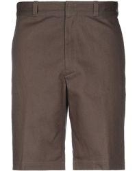 Mauro Grifoni Shorts & Bermuda Shorts - Green