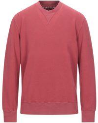 Circolo 1901 Sweatshirt - Pink