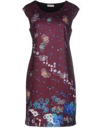 Lavand Short Dress - Multicolour