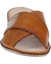 Pakerson Sandals - Brown