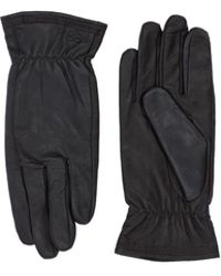 Timberland Gloves - Brown