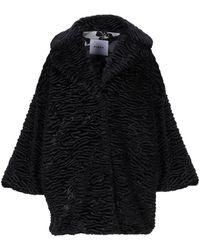 Ainea Teddy Coat - Black