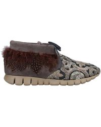 Soya Fish Lace-up Shoes - Brown