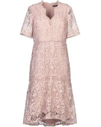 French Connection Robe aux genoux - Rose