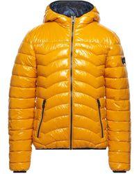 Gas Down Jacket - Multicolour