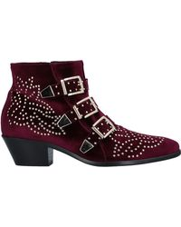 Lemarè Ankle Boots - Multicolour