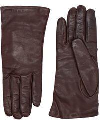P.A.R.O.S.H. Gloves - Brown