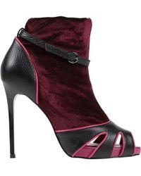 Frankie Morello Ankle Boots - Multicolour