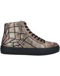 Just Cavalli Sneakers - Brown