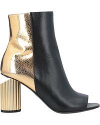 Roberto Cavalli Ankle Boots - Black