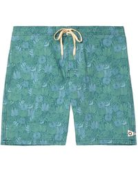 Mollusk Beach Shorts And Trousers - Blue