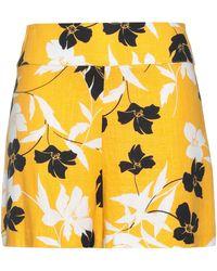 BCBGMAXAZRIA Shorts & Bermuda Shorts - Yellow