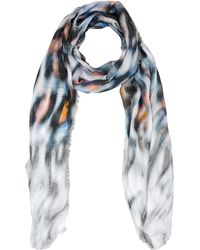 Marc Cain Scarves - Gray
