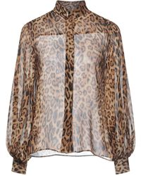 Ragdoll Shirt - Brown