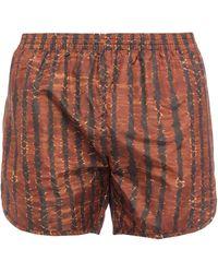 True Tribe Swim Trunks - Brown