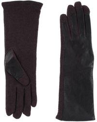 Stefanel Gloves - Brown