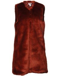INTROPIA Teddy Coat - Red