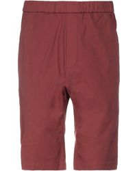 Barena Bermuda Shorts - Red