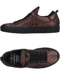 Barracuda Low-tops & Sneakers - Multicolor