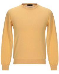 Browns Pullover - Neutro