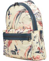 Dolce & Gabbana Backpacks & Bum Bags - Multicolour