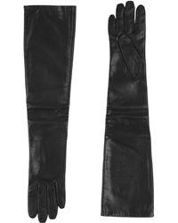P.A.R.O.S.H. Gloves - Black
