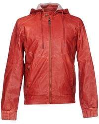 siempre popular tienda del reino unido seleccione para genuino Plumíferos y chaquetas acolchadas Guess de hombre desde 69 ...
