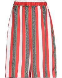 MSGM Shorts & Bermuda Shorts - Red