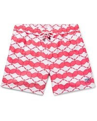 Pink House Mustique Badeboxer - Rot