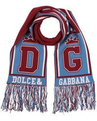 Dolce & Gabbana Écharpe - Bleu