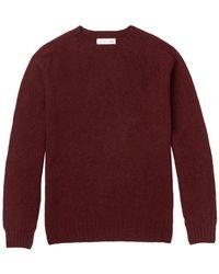 Several Sweater - Multicolor