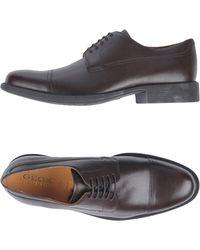 Geox Chaussures à lacets - Marron